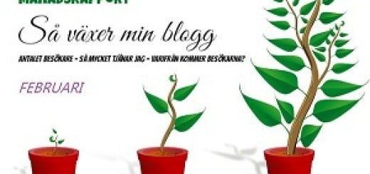 starta-blogg månadsrapport februari
