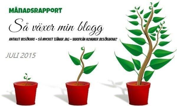 inkomstrapport juli starta-blogg