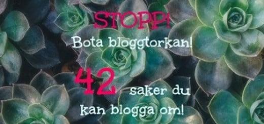 vad kan man blogga om
